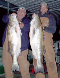 Mike & Al with 38 and 41 Stripers
